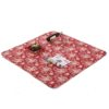 SewCrane Multi-functional Picnic Blanket Outdoor Camping Rug Beach Mat Travel Play Mat, Abstract flowers, 120cm x 120cm