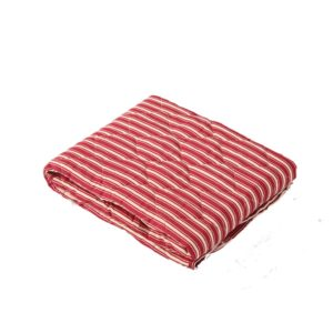 SewCrane Multi-functional Picnic Blanket Outdoor Camping Rug Beach Mat Travel Play Mat, Red Stripes, 120cm x 120cm